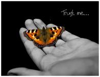 trust-me2.jpg